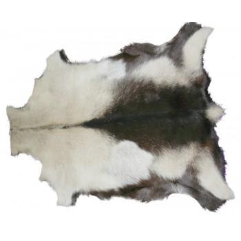 Pele de Cabra